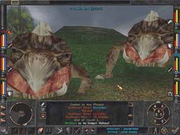 Some of Wizardry 8's huge creatures